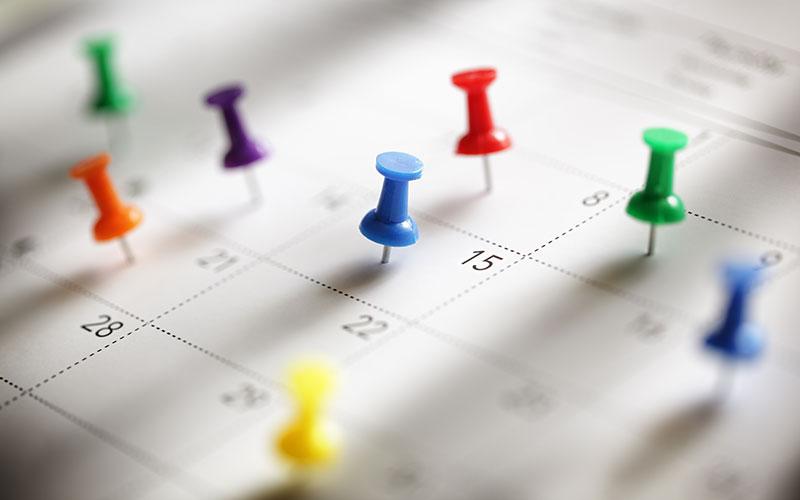 Calender Date