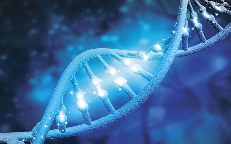 p8-11-news-dna-molecule-shutterstock-1022931832.jpg