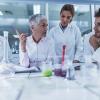 Scientists discussing: iStock
